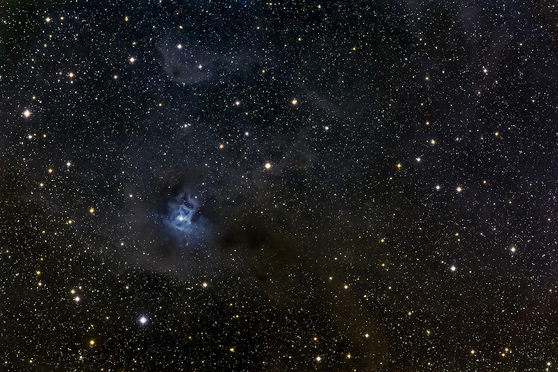 Íris-þokan - Iris nebula (NGC 7023).